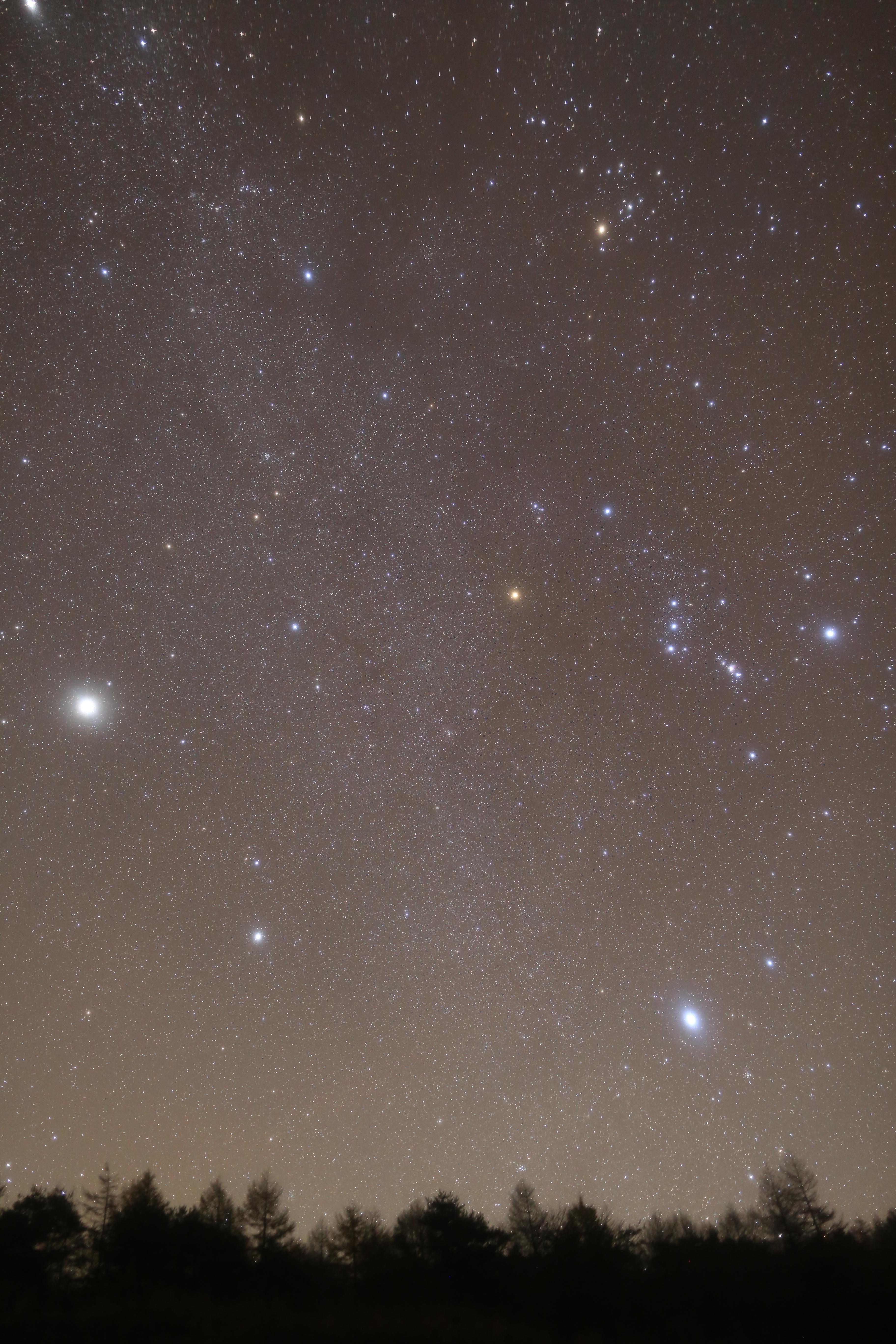 ホワイトバランスオートで撮影したカメラ生成JPEG画像。ソフトフィルター使用 / 追尾撮影
