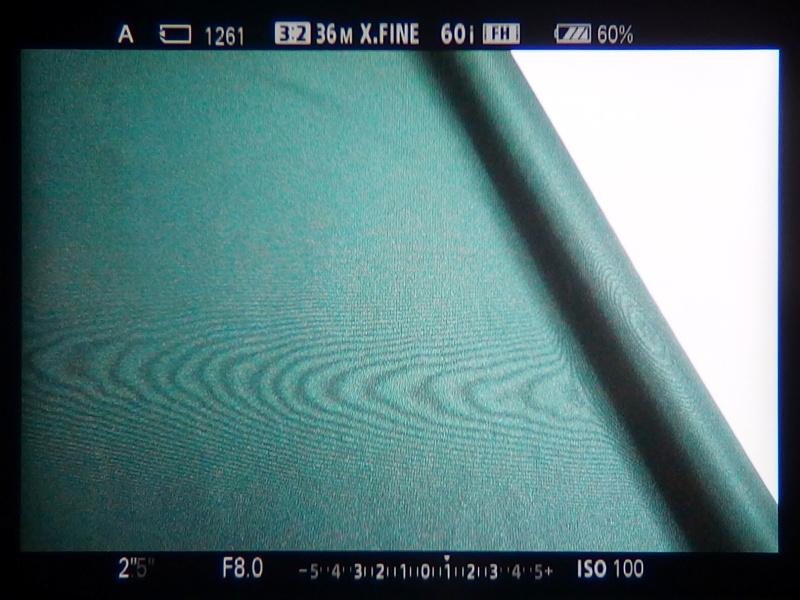 EVF内では写真より顕著にモアレを確認することができたので、撮影時の目安にするとよいかもしれない。