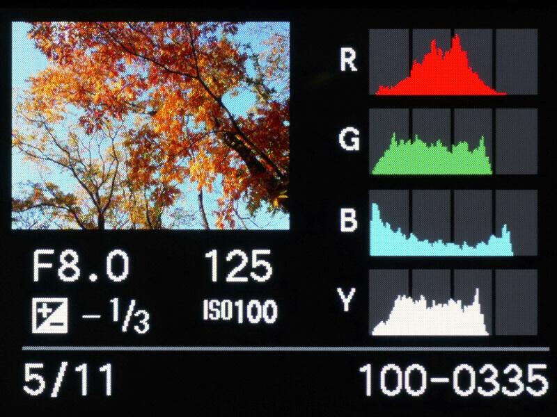"""画像再生中に前ダイヤルを右側に回していくと、1倍→2倍→4倍→8倍→16倍と、拡大倍率が変わる。そして、前ダイヤルを押し込むと""""画像送り操作""""に切り換わる。この状態で左右のカーソルボタンを操作すれば、拡大倍率と拡大部分を維持したまま表示画像を切り換えることができるのだ。"""