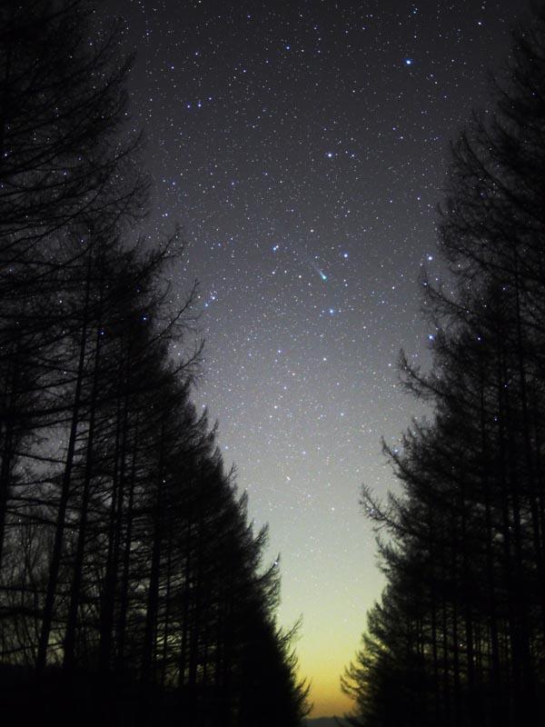 筆者が撮影したラブジョイ彗星。2013年12月5日朝撮影 / OLYMPUS OM-D E-M5 / LEICA DG SUMMILUX 25mm F1.4 / F1.4 30秒 ISO1600 追尾撮影