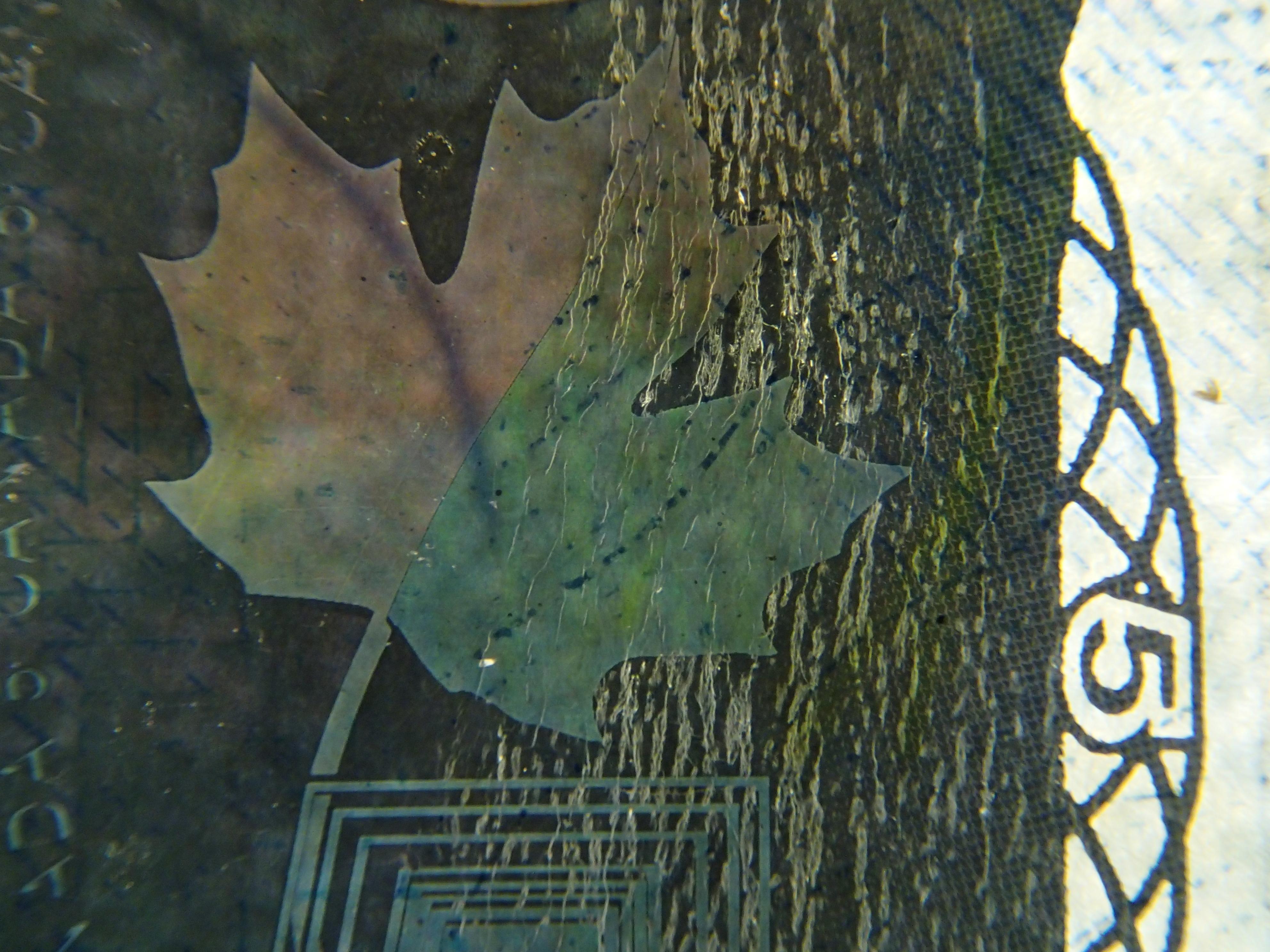 カナダのお札は美しいホログラムが刷り込まれているのが特徴。表面右側の帯だが、メイプルの葉っぱと「5」の字が確認できる。