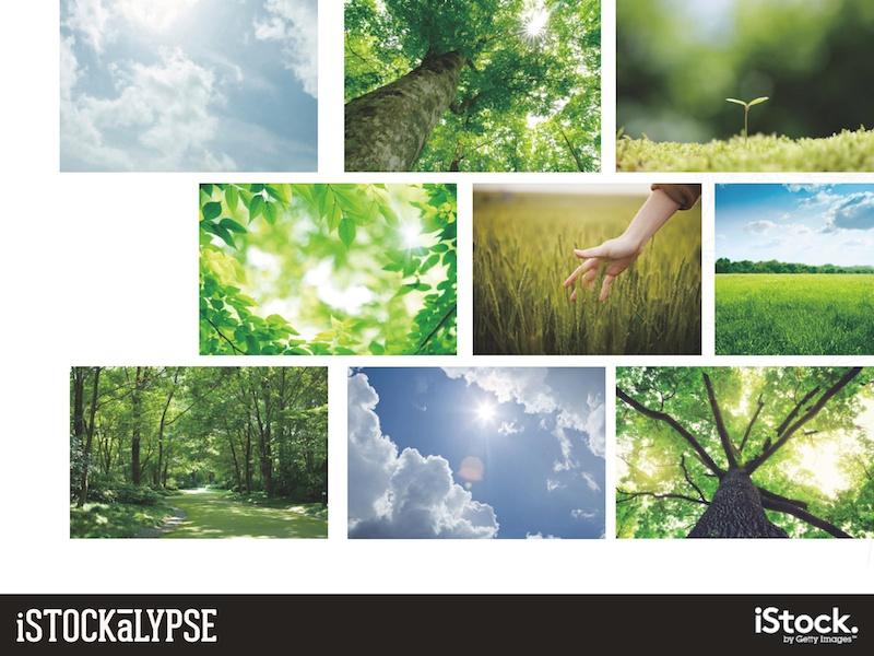 例)自然環境、緑や森、空:持続可能な健康と自然の生活様式、エコロジーや人間と自然の共生を連想させるもの