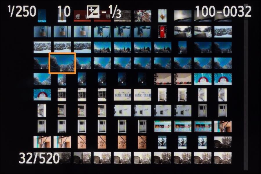 インデックス表示は、4枚と9枚に加えて36枚と100枚が追加された。