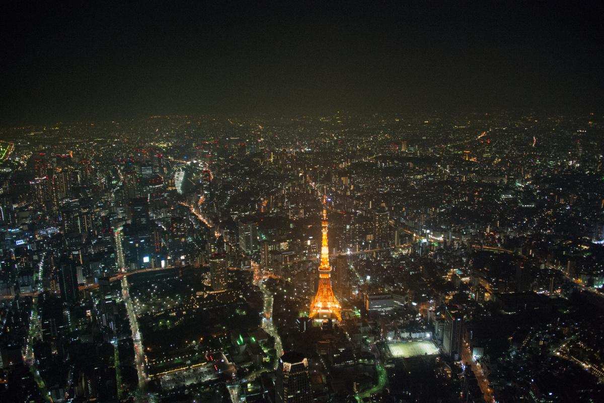 オレンジの東京タワーが映える