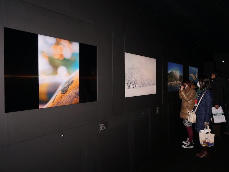 4Kフォトギャラリー。暗い室内に浮かび上がる写真が美しい