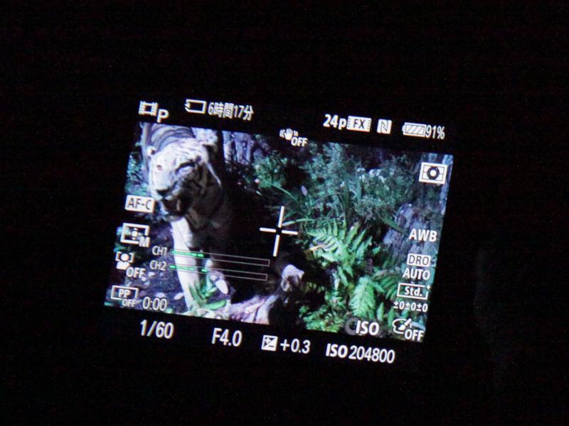 α7Sの高感度体験コーナー。肉眼ではほとんどなにも見えない明るさだが、実はトラのぬいぐるみが置いてある(左)。その場所でも撮影ができる(右)