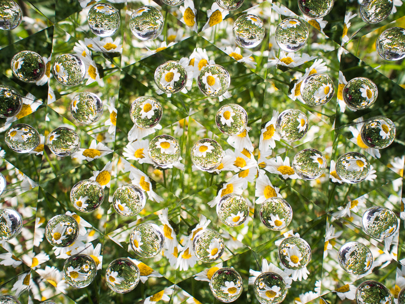 玉の中は広角レンズで写しているようなものなので、被写体は小さくなり歪む。オリンパス PEN E-P5、M.ZUIKO DIGITAL 17mm F1.8