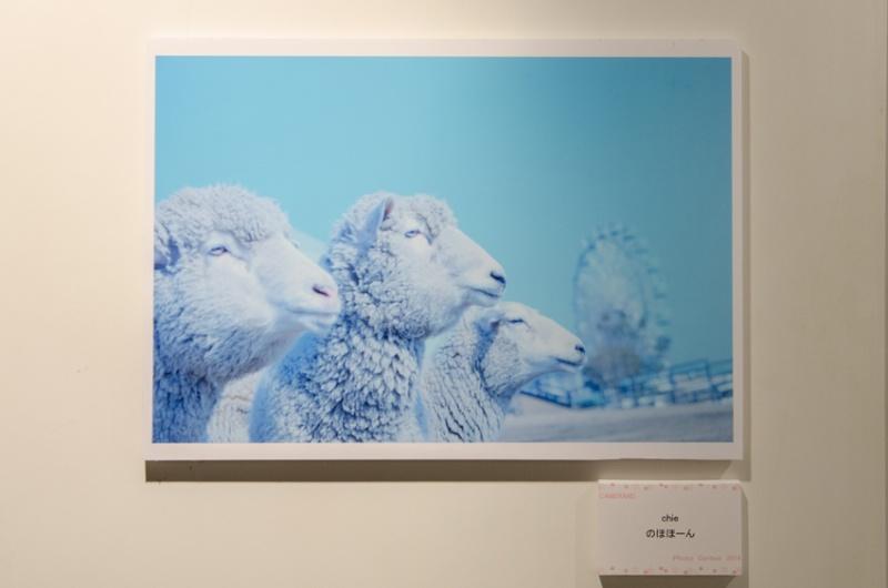 chieさんの受賞作品「のほほーん」。「3匹の羊がキャメラびとの3人みたい」という選者=キャメラびとのコメントに会場がどっと沸きました。
