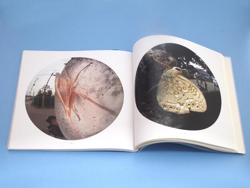 ぼくはこの魚露目8号だけで街中の昆虫を撮影した写真集「東京昆虫デジワイド」を2007年に出版し、これを記念してメーカーであるFIT社さんが、魚露目8号スペシャルバージョンを、プレゼントしてくれたのだった
