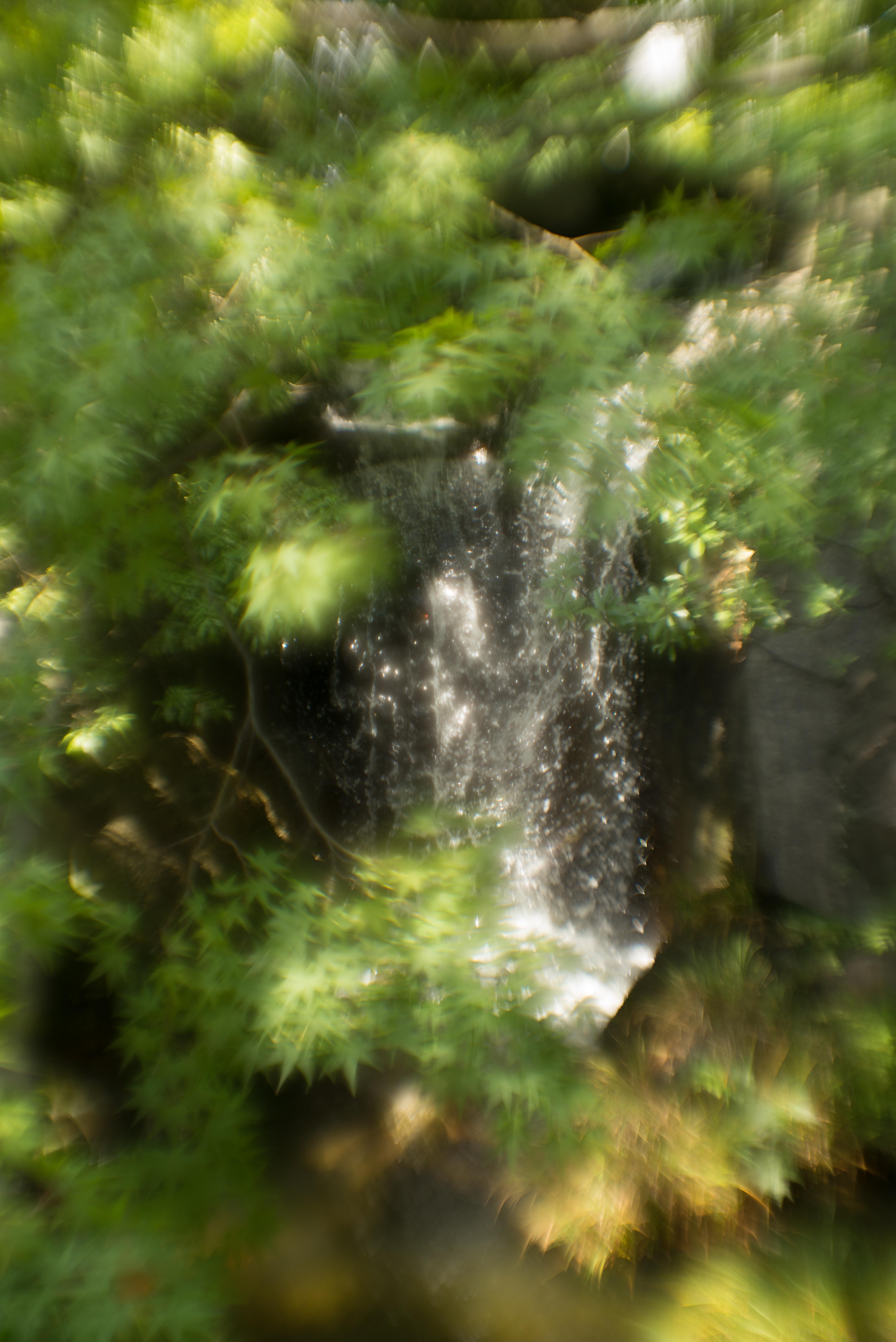 Leica M Typ 240 / 花影 S1 60mm F2.2 / 1/350秒 / F2.2 / -0.66EV / ISO200 / WB:オート