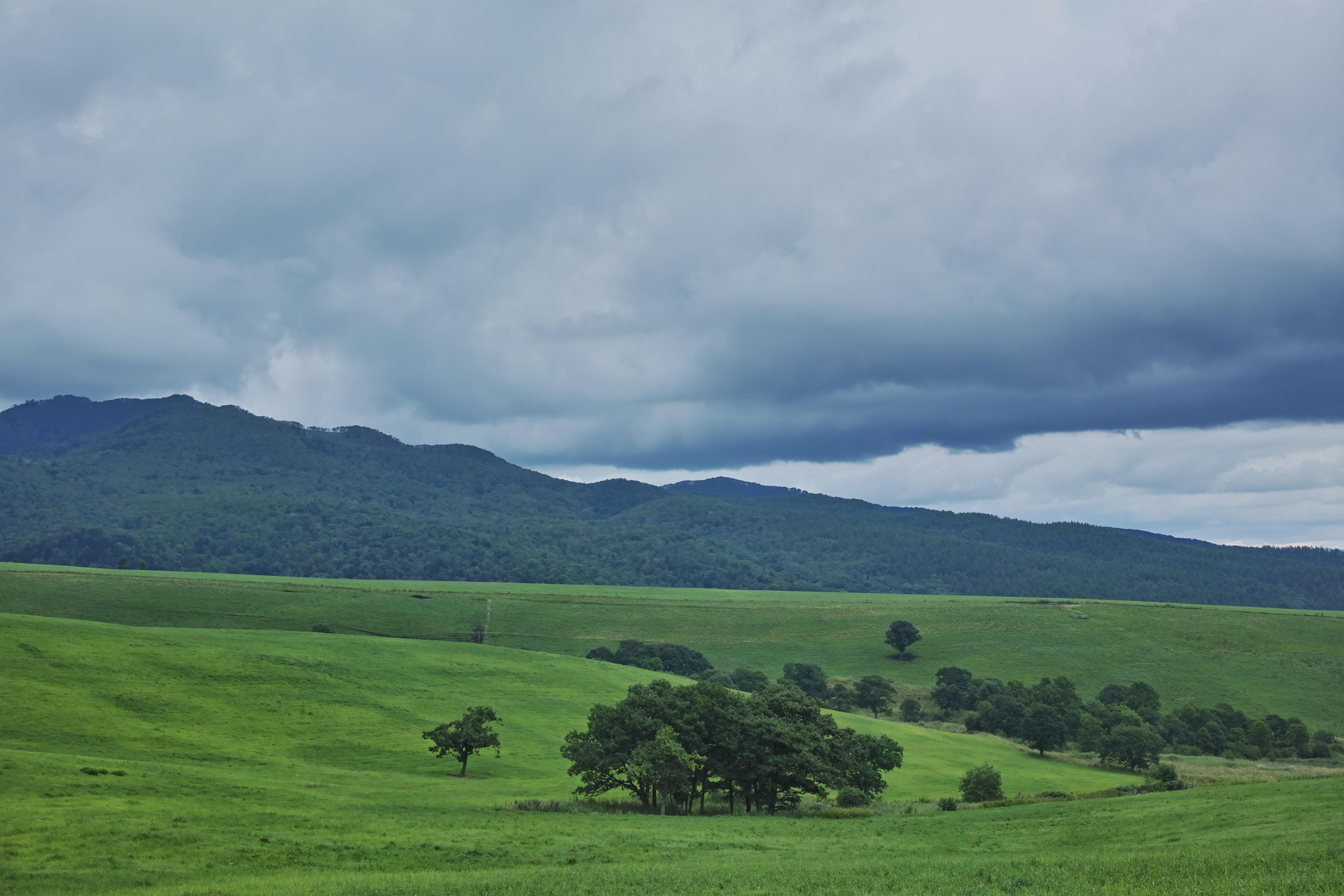 山々の中腹に広がる牧場。深い緑と雲のグラデーションが景色に厚みを持たせてくれる。ISO100 / F8 / 1/100秒