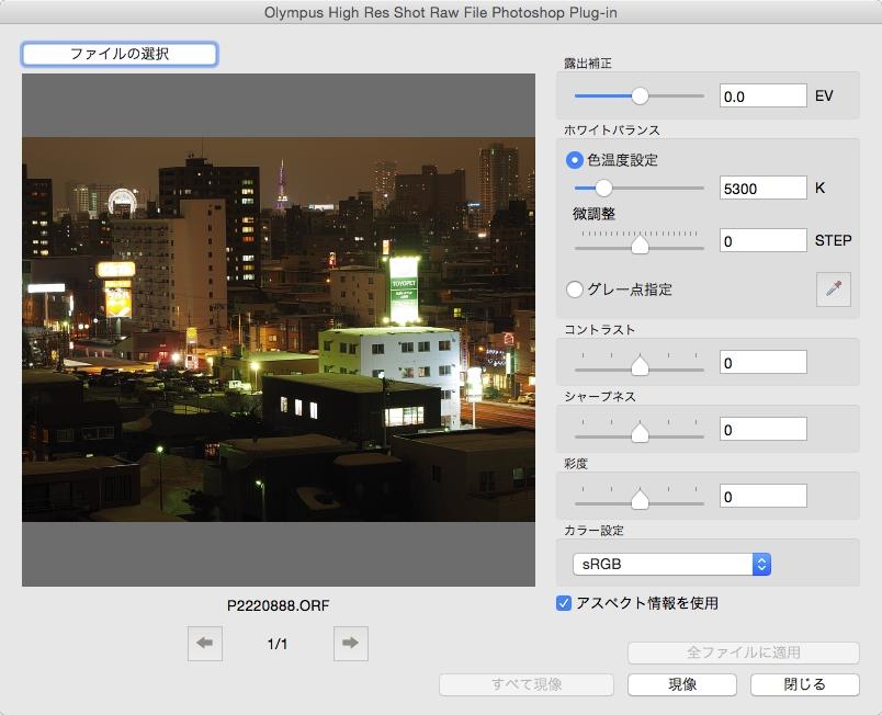 ファイル選択ダイアログで現像したい画像を選んだら、ここでパラメーターを設定する。あんまり高度なことはできない。