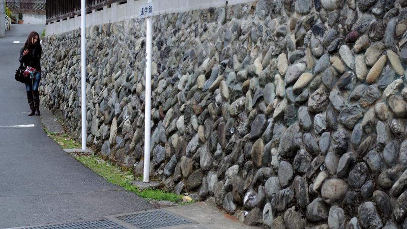 住宅街の石壁。長さを出すために、16対9のハイビジョン比率で撮影。
