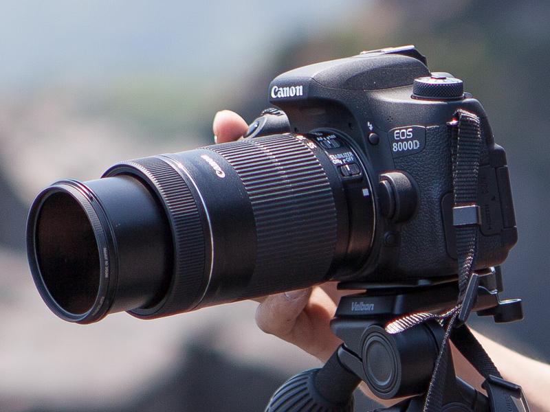 今回使用したカメラはキヤノンのデジタル一眼レフカメラ「EOS 8000D」。レンズは「EF-S18-135mm F3.5-5.6 IS STM」と「EF-S55-250mm F4-5.6 IS STM」