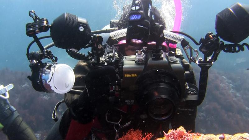 The Photographers 2―心揺さぶる光景を求めて― 光の海編より、尾崎たまきさん