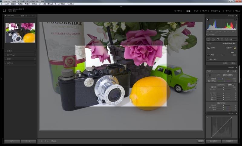 50mm相当の現像画面。「切り抜き」ボタンをクリックすると、フル画素で記録されていることがわかる。「初期設定」にすると、28mmに戻る。