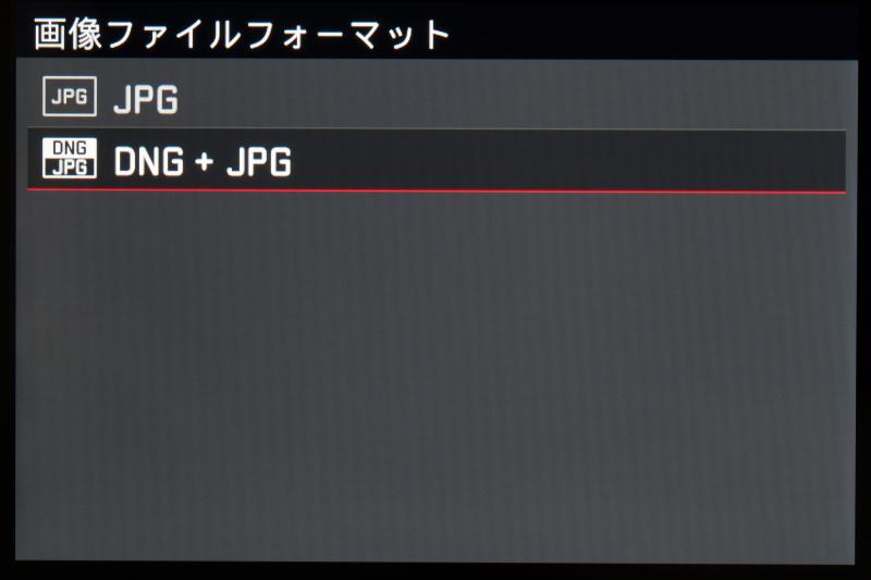 記録はJPEGとDNG+JPEGのどちらか。ライカTやライカXシリーズと同様に、DNGのみはできない。