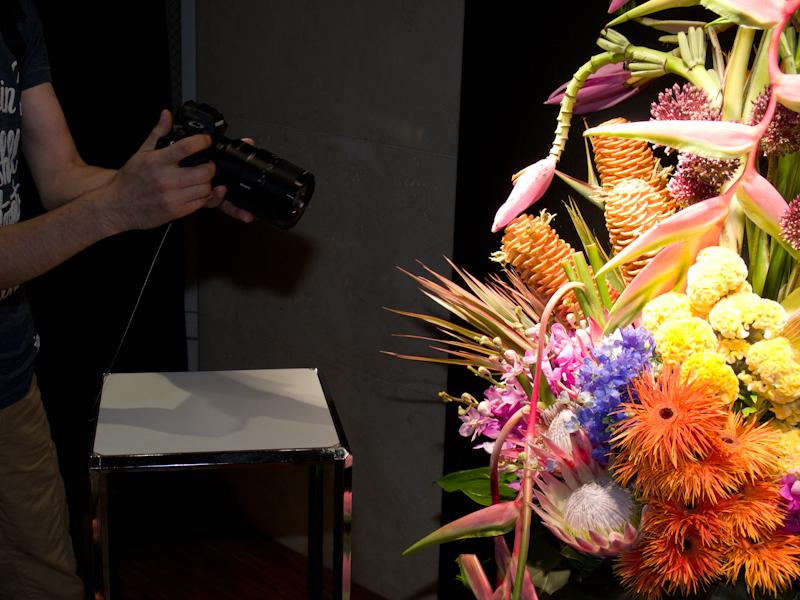 花のマクロ撮影コーナー