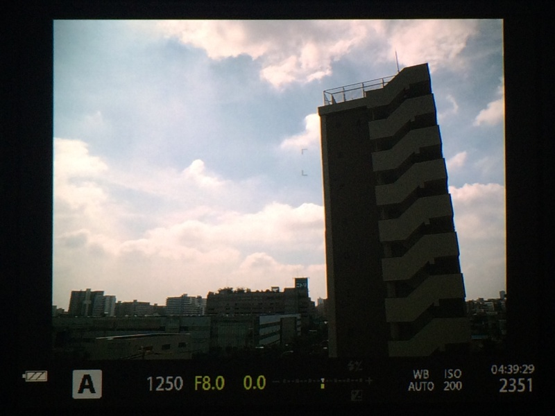 参考:通常設定時のEVF表示。逆光状態なので、空が明るくみえる。