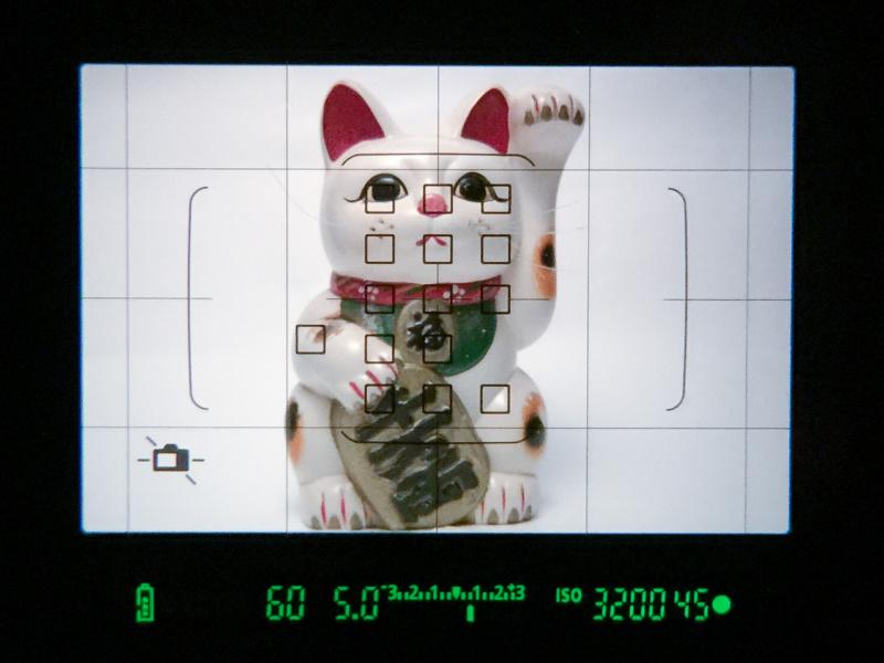 ファインダー像に重なる液晶表示では、選んだAF測距点のほか、罫線、水準器も表示可能。これらは設定により表示/非表示を選べる。なお、EOS 80Dのファインダーの視野率は約100%となった。EOS二桁機としては初めてのことだ。