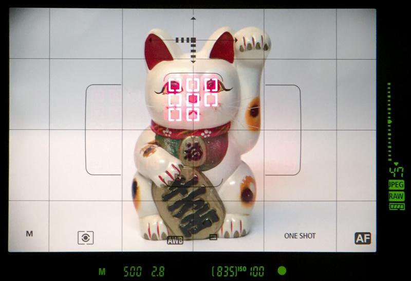 ファインダーは視野率約100%、倍率約0.76倍。ファインダー外縁および下部の液晶による画像タイプ、撮影モード、露出設定値などの表示のほかに、内蔵された透過型液晶にはグリッドや各種設定値の表示が可能。AFエリア枠と選択AFエリアも透過型液晶に表示される。フォーカス合焦時にはスーパーインポーズで測距点が赤く光るようになった。これはEOS-1D Mark IVまではあった機能だったが、EOS-1D Xでは非対応だったものだ。フォーカス合焦が暗所でも判別しやすいので、これはありがたい復活といえる。この画像のファインダー像に見られる周辺減光は、参考のためファインダー内を別のカメラで撮影したときに発生したもの。