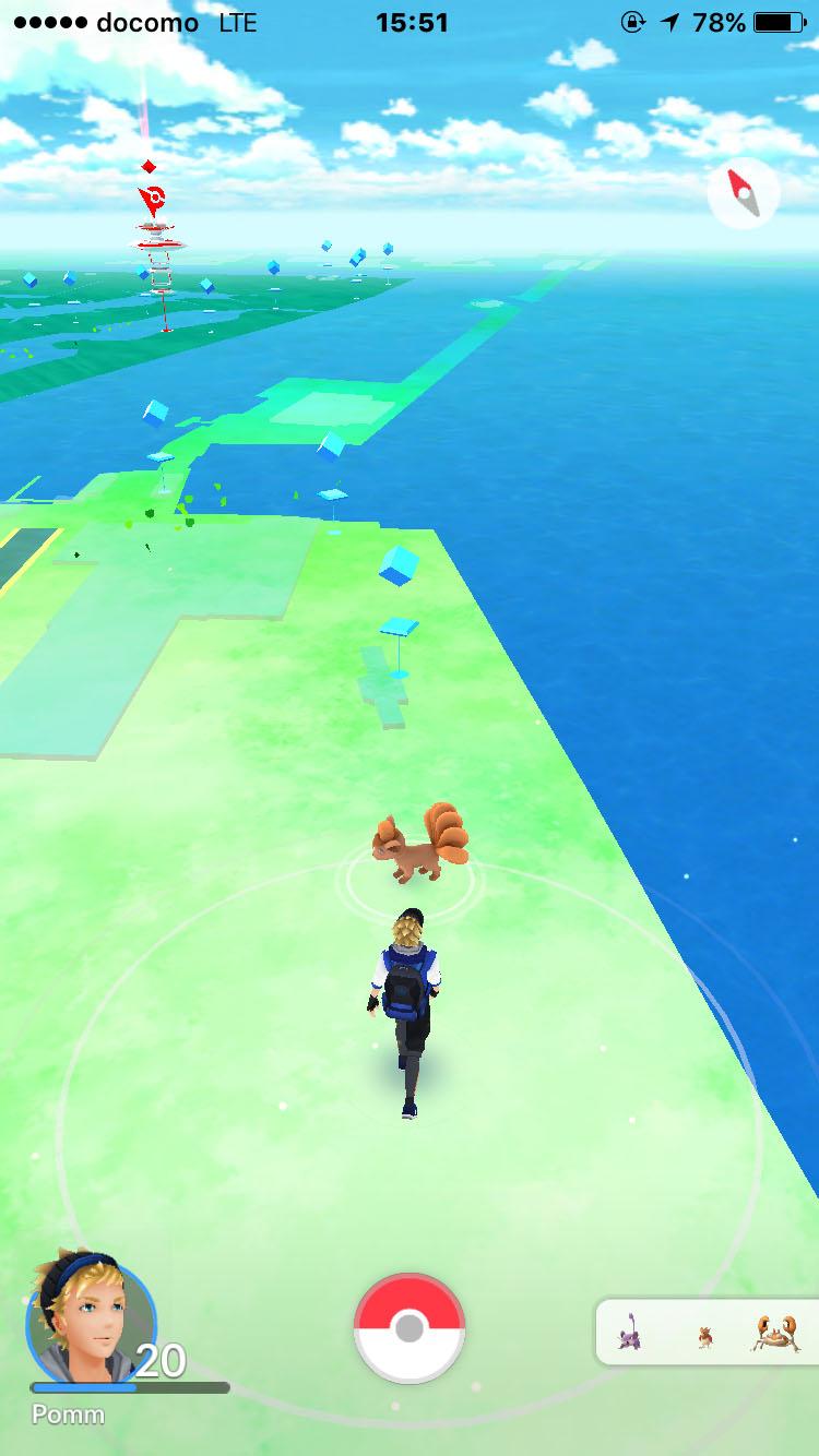 竹芝の埠頭を歩くと、ロコンのシルエットが!1時間に3~4匹ぐらいのペースでしたが、出現してくれました。ロコンかわいい