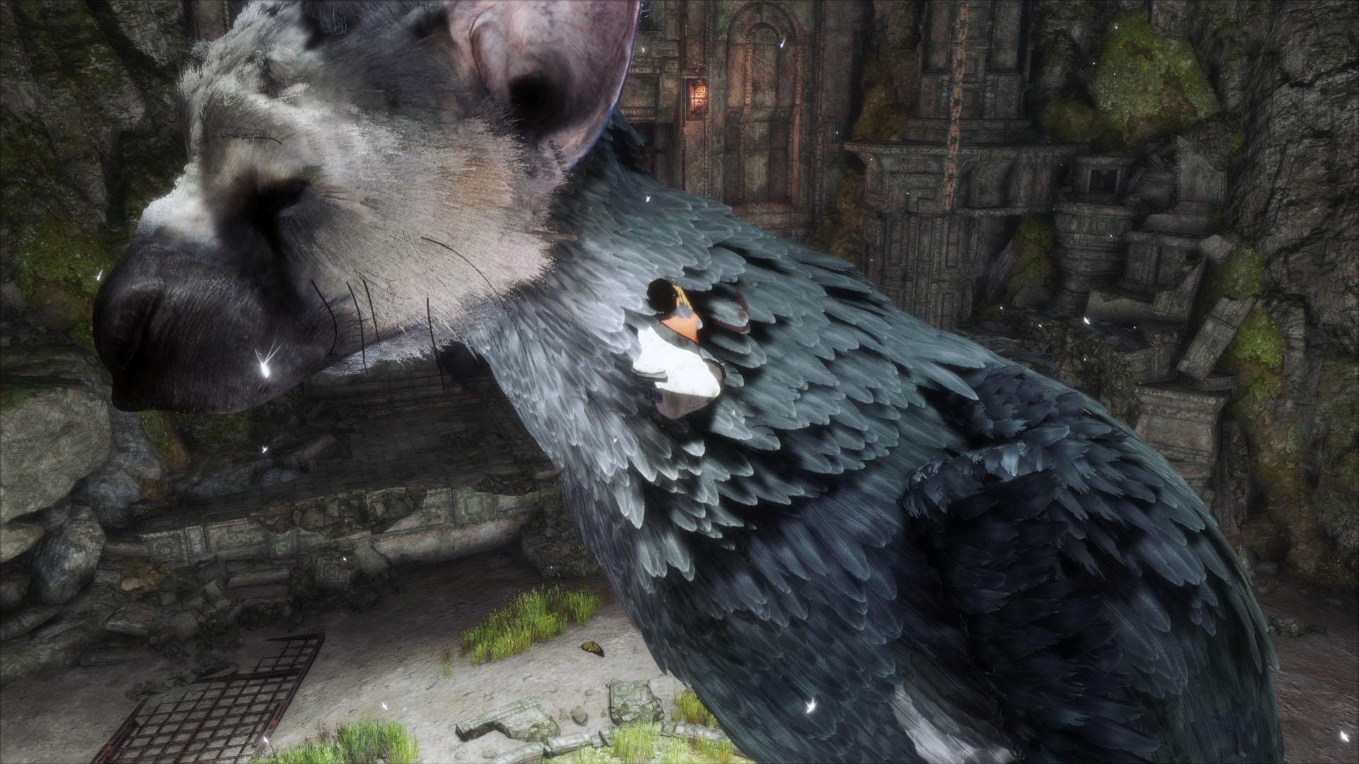 大鷲のトリコとのもどかしいぐらいの協力関係もまたゲームデザインと言える「人喰いの大鷲トリコ」。美しいゲームですホントに