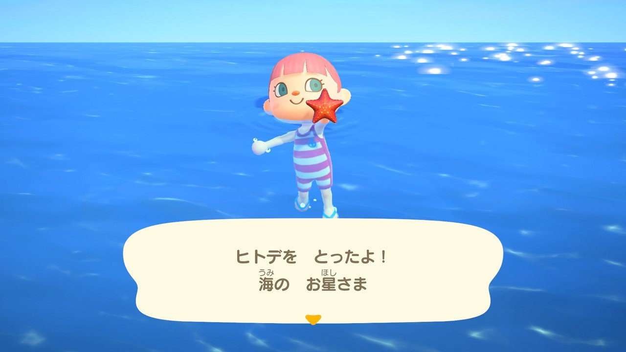 海ではヒトデなどが取れるようだ