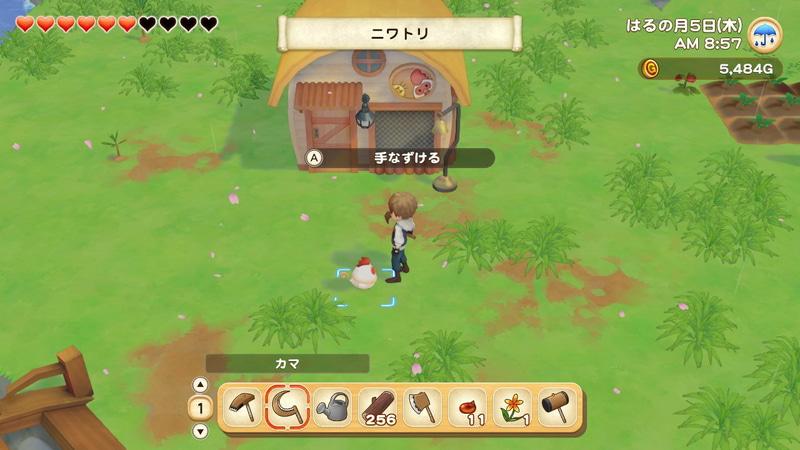 牧場にいるニワトリを手なずけてとり小屋に入れる