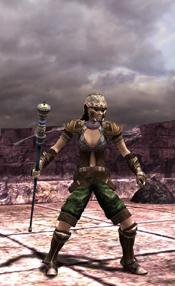 装備や防具はゲーム画面のプレーヤーキャラクターにも反映される。大剣なら鎧、杖なら魔導師風、などとコーディネートを考えることも冒険の楽しみの1つ