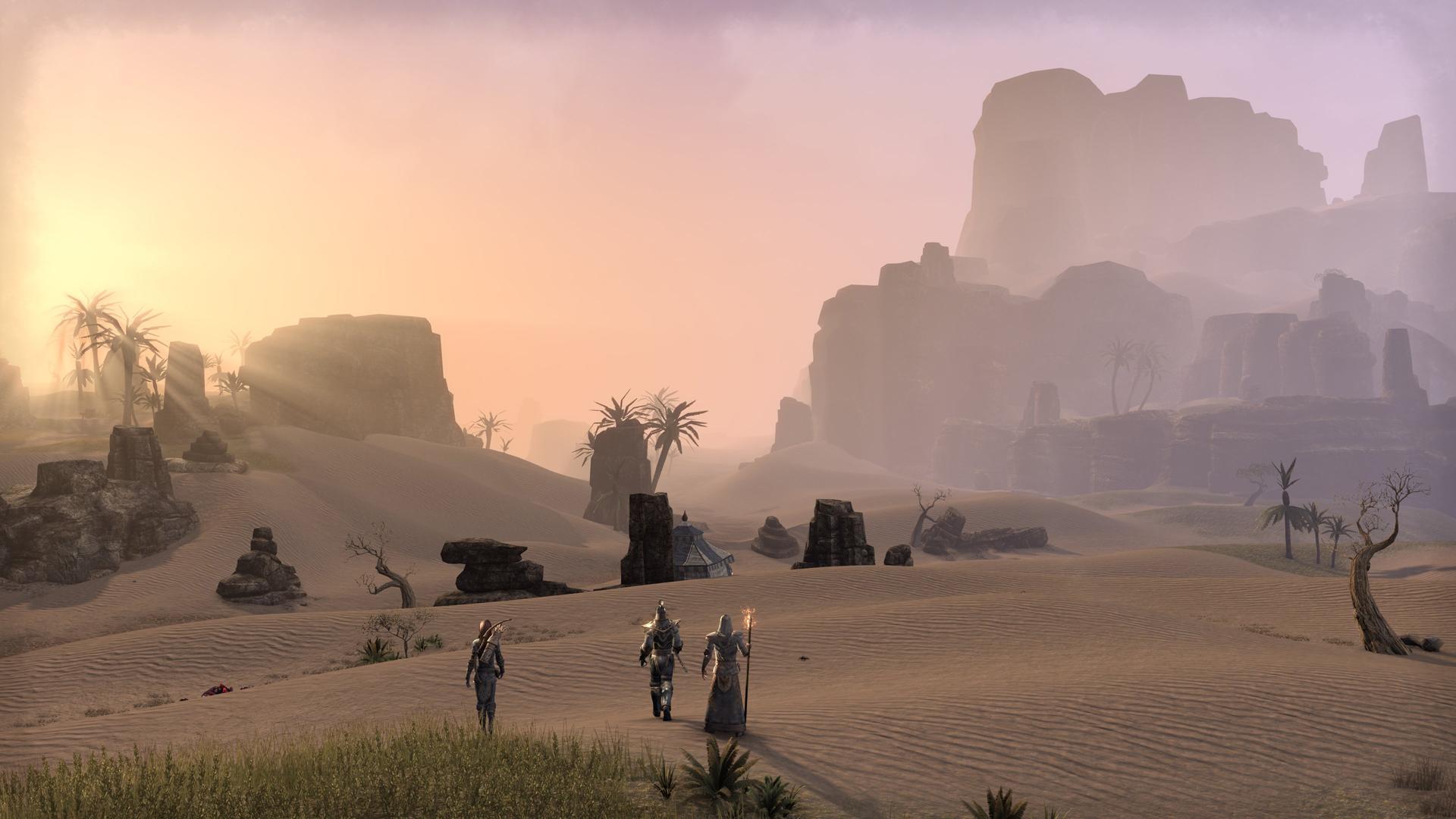「Elder Scrolls」シリーズの全地域が対象ということで、このような砂漠地帯も描かれる