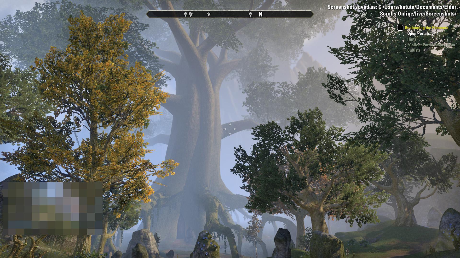 北にある巨大な森
