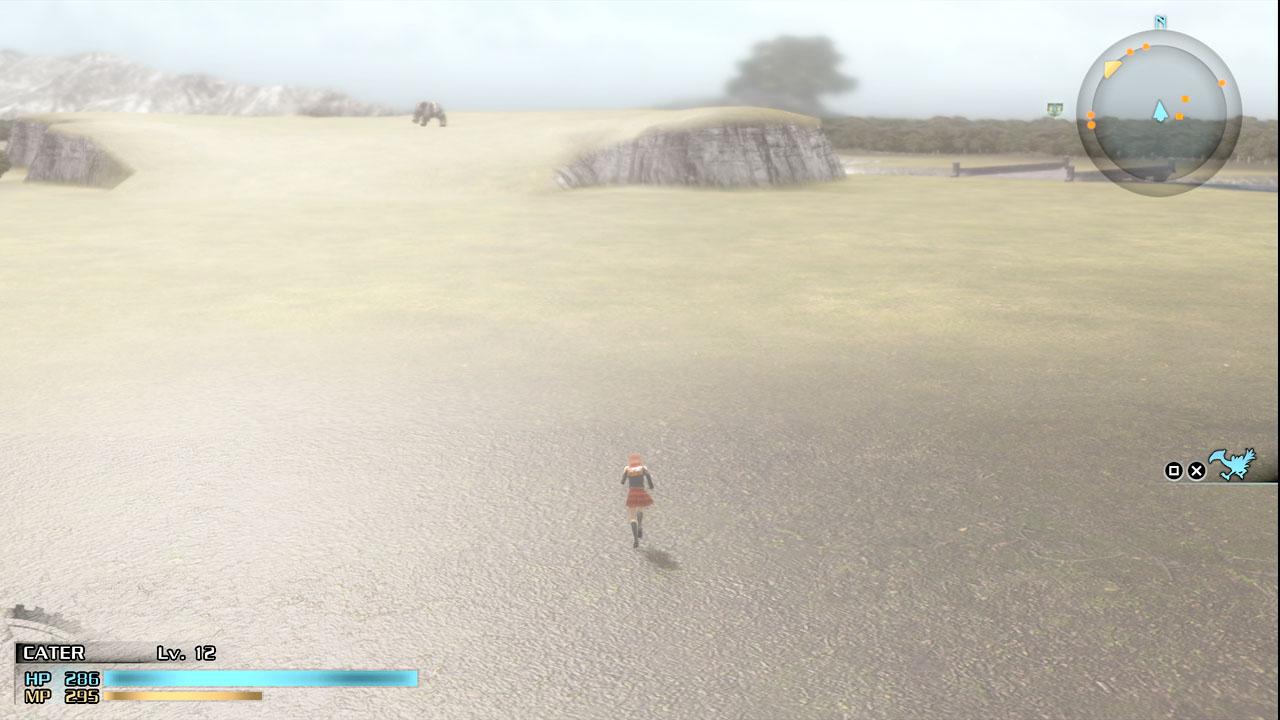 ワールドマップも存在。街や、隠された洞窟などの場所も存在し、敵とのエンカウントももちろんする