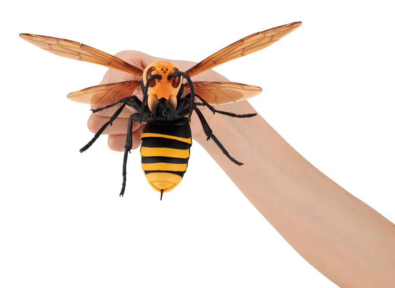 すずめばちを全長約150mmで再現した「神秘的な昆虫の生態」を感じることができる可動フィギュア。価格は1回500円(税込)