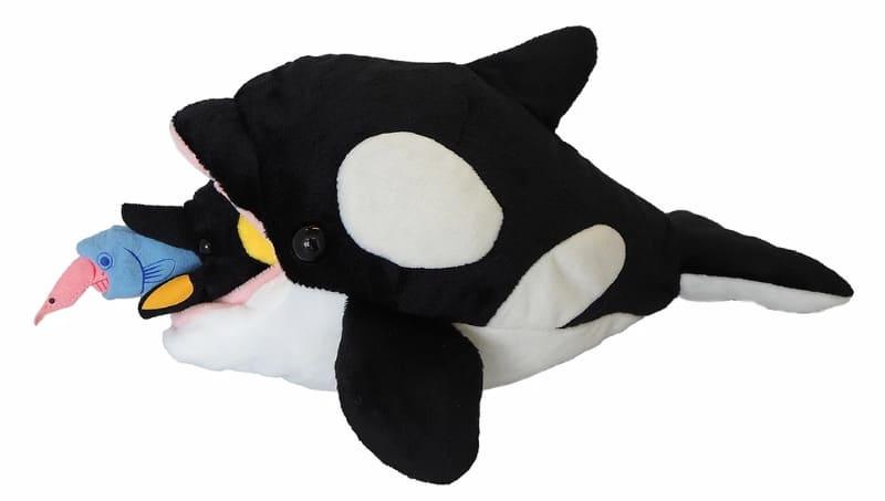 オキアミ→魚→ペンギンの順番にシャチの腹に入れることができる