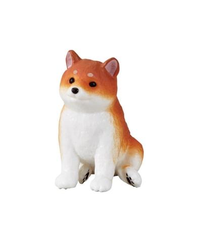 おすわり 柴犬