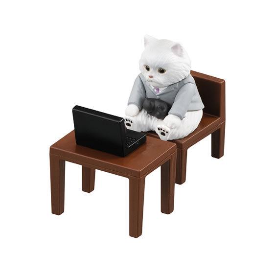ネコon白猫