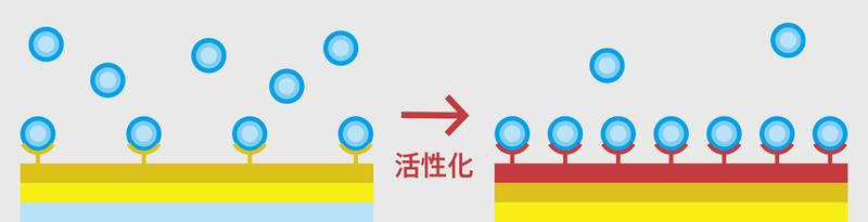 ZOZOHEAT COTTON 分子レベルで吸湿・発熱効率を高めたコットンの原理