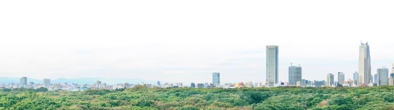 現地10階相当から明治神宮方面の眺望(11月撮影)