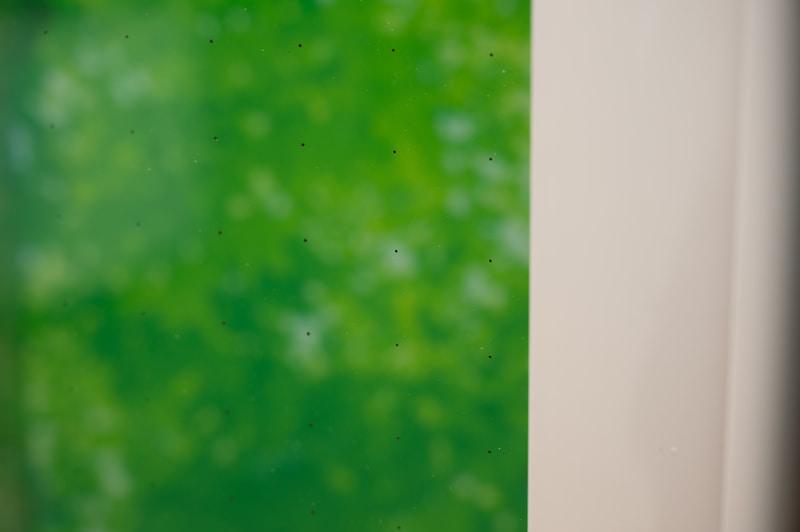 離れると見えにくいが、近づくと真空断熱ガラスのピラーが黒い点として見える