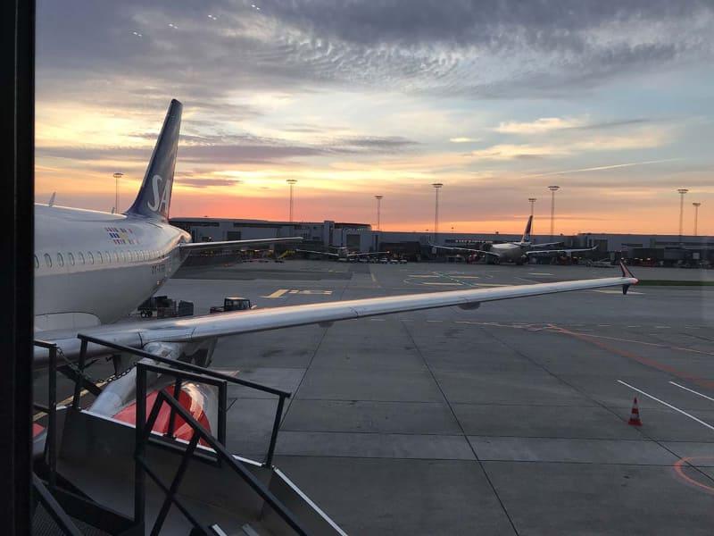 ワクチンパスポートの普及で国境移動は復活するか。デンマークのコペンハーゲン空港にて