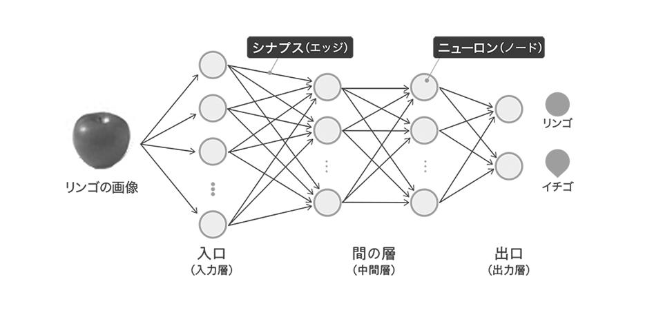 """<strong class=""""em """">[図1]</strong>リンゴの画像認識を例にしたディープラーニングの仕組み"""