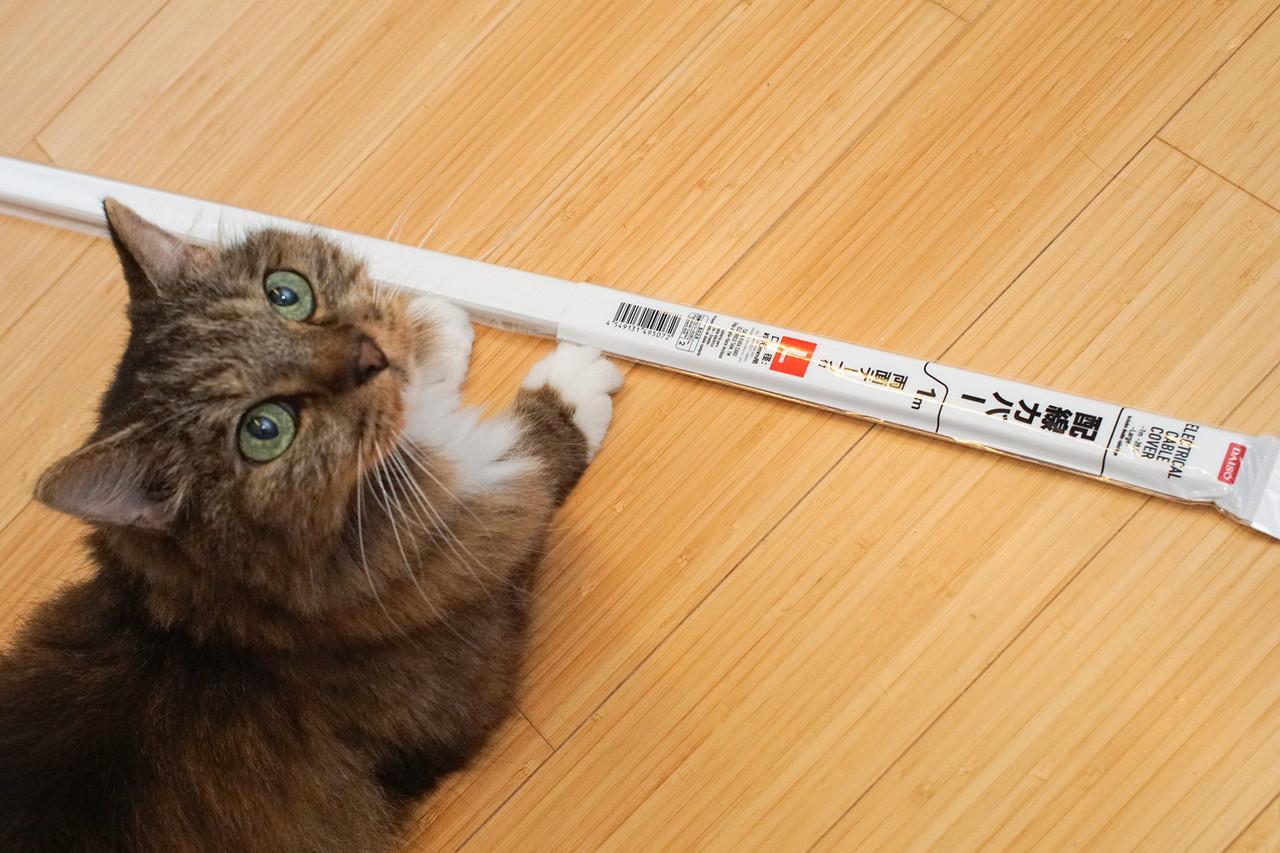 ダイソーに売っている「配線カバー」。これは「L」サイズで、もちろん100円(税別)