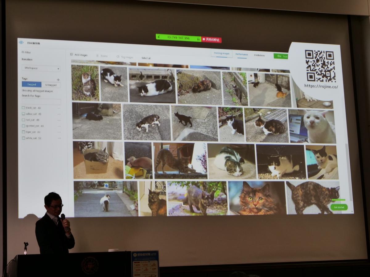 日本猫の種類を判定できる