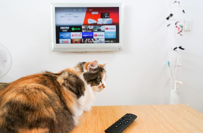 Wi-Fiルーターに設定しておいた5GHz帯のSSIDに「Fire TV Stick」を接続しよう