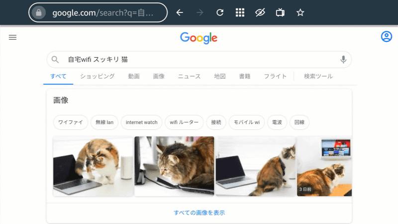 Googleでの検索結果が表示される