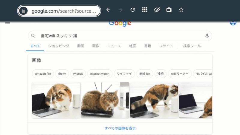 Silk Browserが起動したら、リモコンの「≡」ボタンを押すと上部メニューにフォーカスが移動するので、そのまま選択して文字を入力