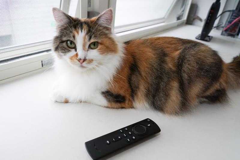 「Fire TV Stick」の使いこなしを解説中。デバイスを指定して通信の優先順位をコントロールしてみよう