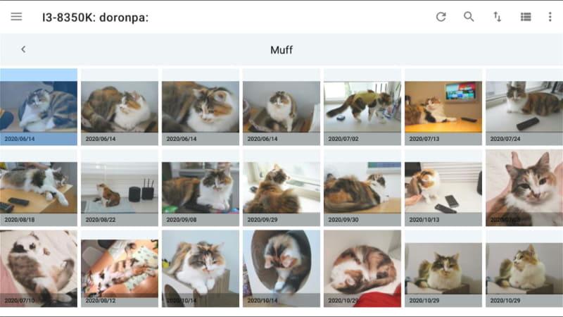 PCに保存された写真をDiXiM Playから表示しているところ