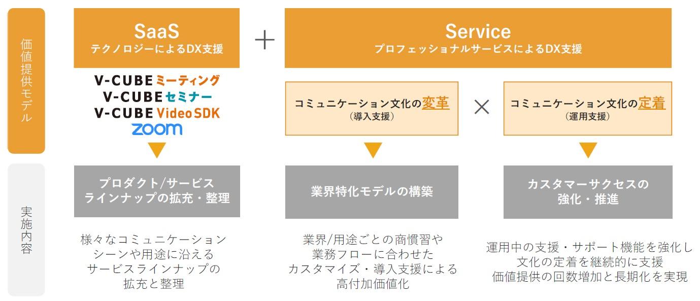 SaaS+Service